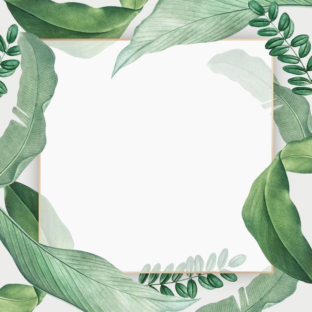 Carte paradis tropical Psd gratuit