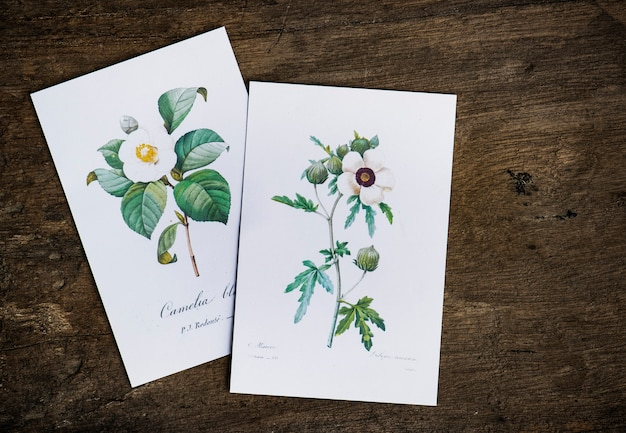Cartes de voeux florales Psd gratuit