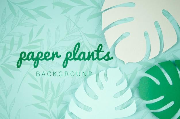 Fond De Plantes En Papier Avec Des Feuilles De Monstera Psd gratuit