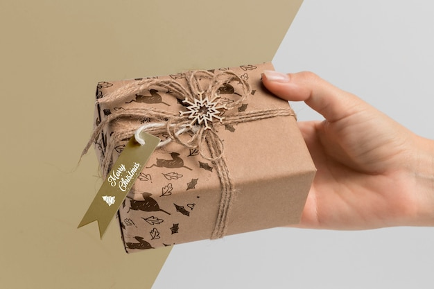 Gros Plan, Main, Tenue, Cadeau Psd gratuit