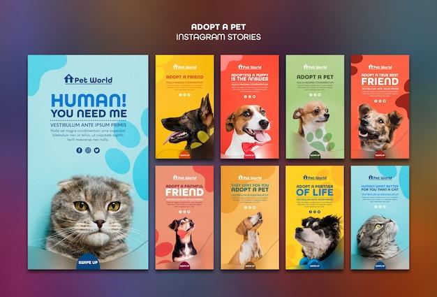 Des Histoires Instagram Pour L'adoption D'animaux De Compagnie Avec Des Animaux Psd gratuit