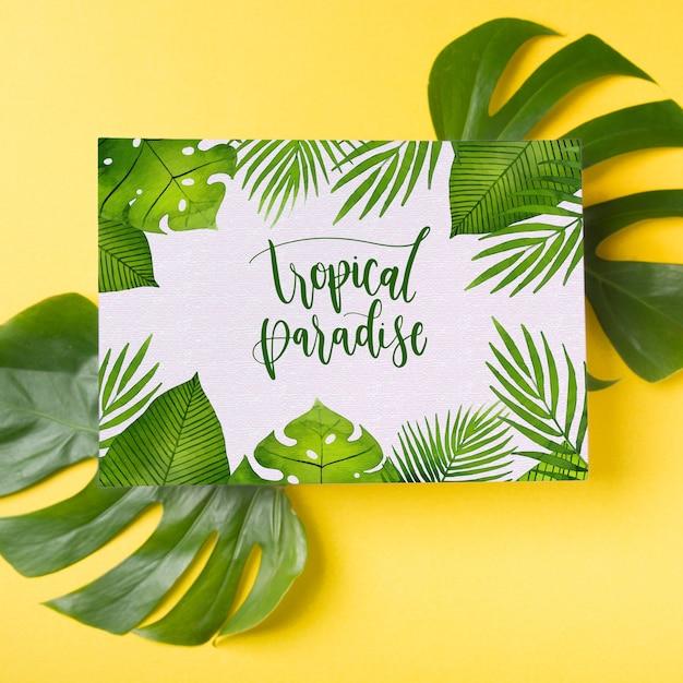 Maquette de couverture sur les feuilles de palmier Psd gratuit