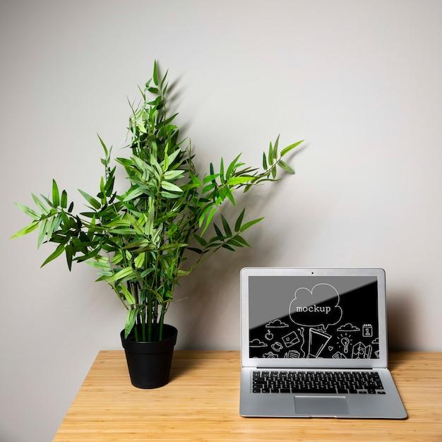 Maquette pour ordinateur portable à côté de la plante Psd gratuit