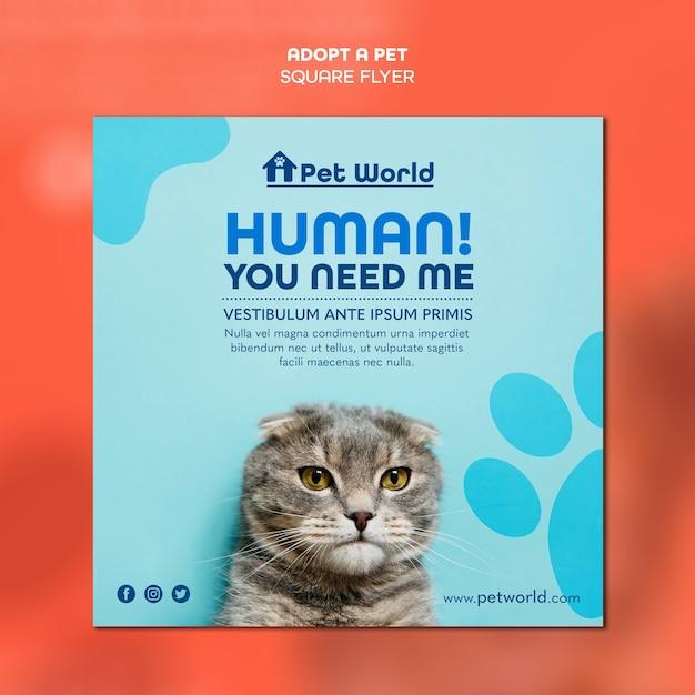 Modèle De Flyer Carré Pour Adoption D'animaux Avec Chat Psd gratuit
