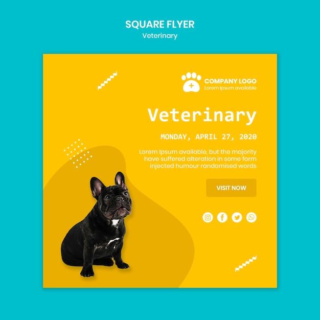 Modèle De Flyer Carré Vétérinaire Psd gratuit