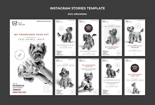 Pack D'histoires Instagram Pour Une Entreprise De Toilettage Pour Animaux De Compagnie Psd gratuit