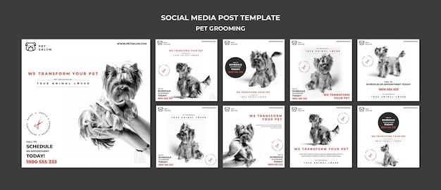 Pack De Publications Instagram Pour Une Entreprise De Toilettage Pour Animaux De Compagnie Psd gratuit