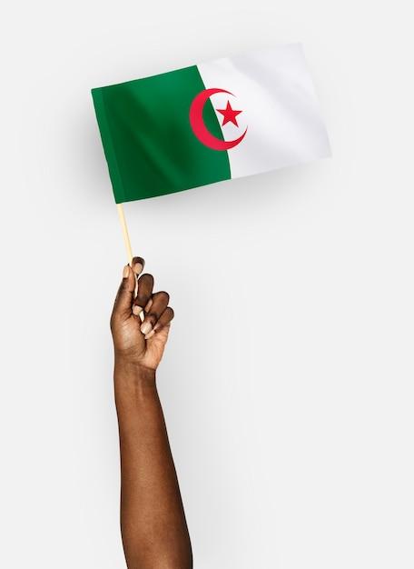 Personne brandissant le drapeau de la république démocratique algérienne PSD Premium