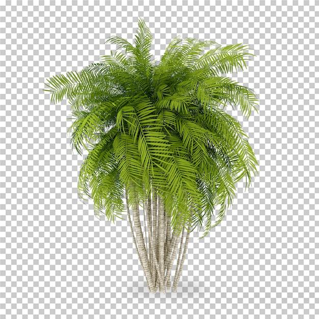 Plante Isométrique En Pot Rendu 3d PSD Premium
