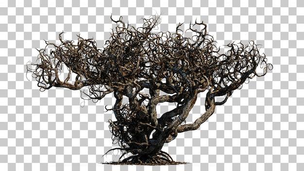 Rendu 3d De L'arbre De La Mort Effrayant PSD Premium