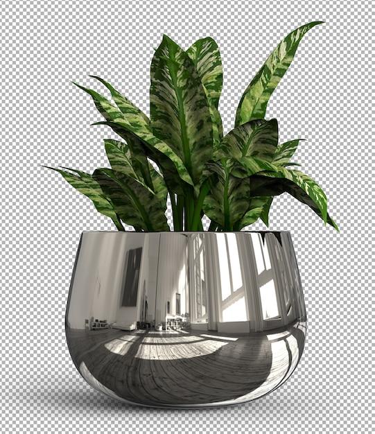 Rendu De Plante Isolée. Vue De Face Isométrique Sur Transparent PSD Premium