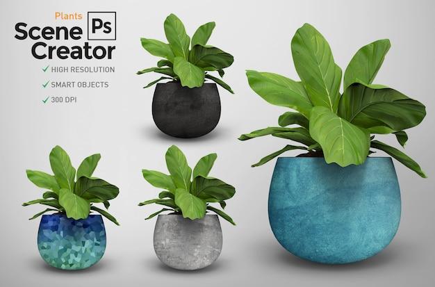 Rendu De Plantes Isolées 3d. Créateur De Scène. Plantes En Pot. Différents Modèles. Créateur De Scène. PSD Premium