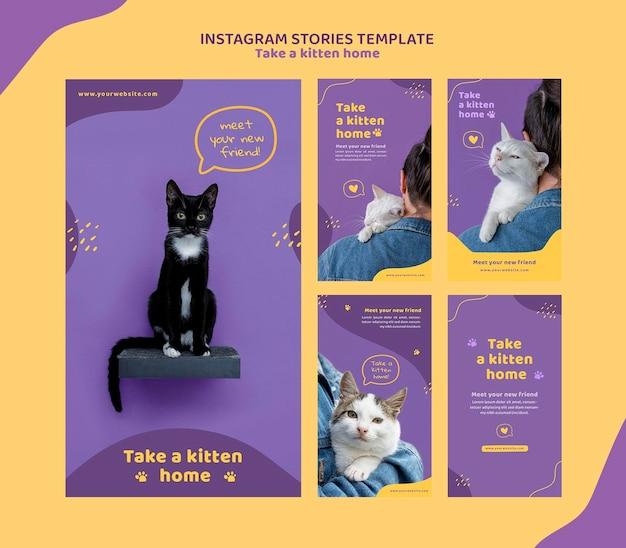 Adote um modelo de histórias de gatinhos no instagram Psd Premium