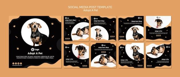 Adote um modelo de postagem de mídia social de conceito de animal de estimação Psd grátis