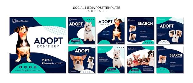 Adote uma coleção de postagens do instagram para animais de estimação Psd Premium