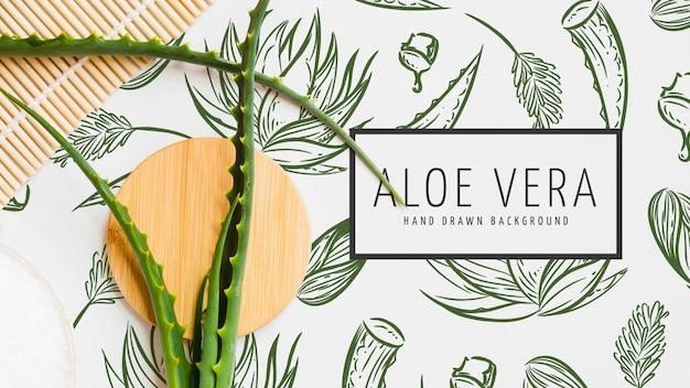 Aloe vera mão desenhado fundo Psd grátis