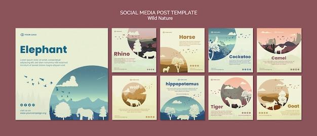 Animais selvagens na natureza post de mídia social Psd grátis