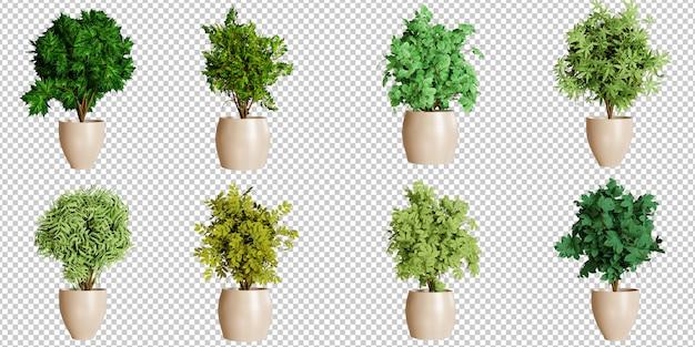 Conjunto de decoração de plantas Psd Premium