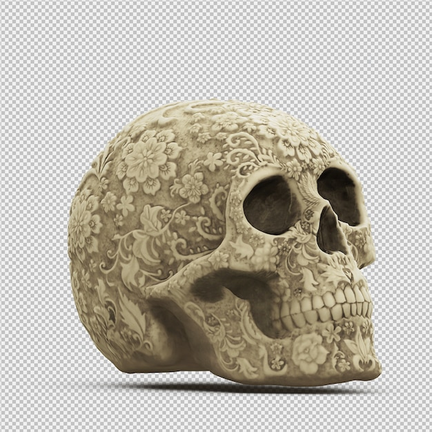 Crânio isométrica 3d isolado render Psd Premium