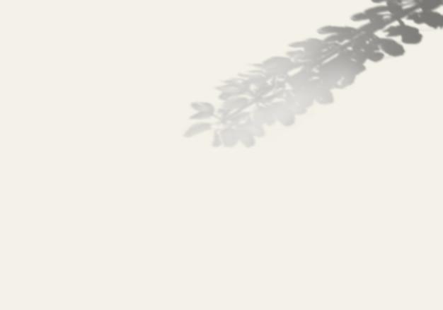 Ele sombra de uma planta exótica em uma parede branca. Psd Premium