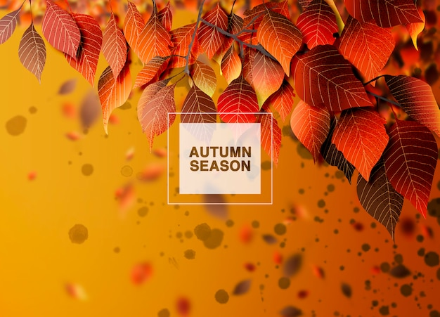 Fundo de temporada outono, folhas e sombras Psd Premium