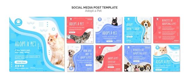 Mídia social postar modelo com adotar animal de estimação Psd grátis