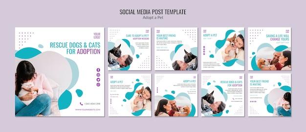 Modelo de postagem de mídia social com adoção de animais de estimação Psd grátis