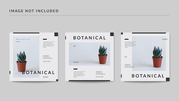Modelo de postagem em mídia social botânica Psd Premium
