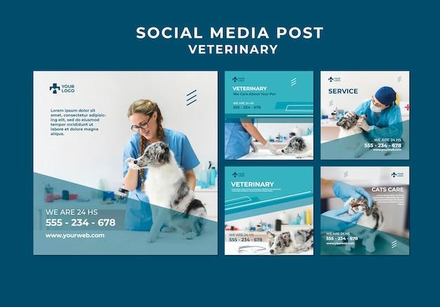 Modelo de postagem em mídia social de clínica veterinária Psd Premium