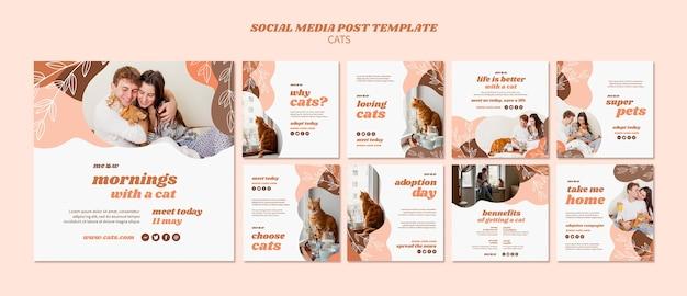 Modelo de postagem - mídia social de gatos Psd grátis
