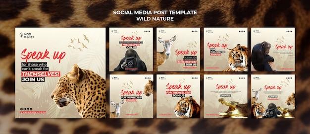 Modelos de postagens de mídia social da natureza selvagem Psd grátis