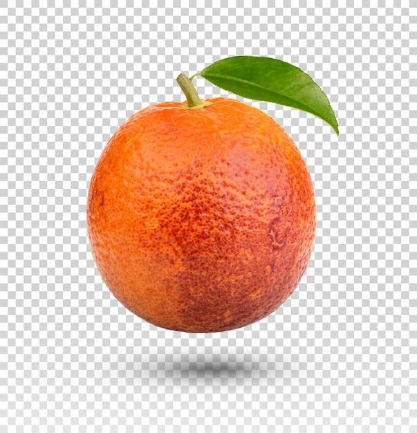 Orange blood com folhas isoladas Psd Premium