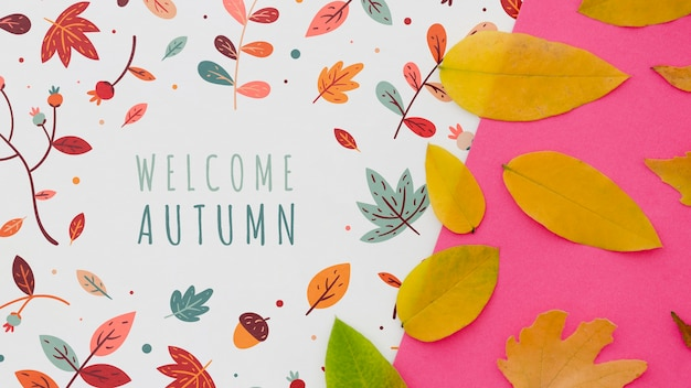 Outono de boas-vindas ao lado de fundo rosa Psd grátis
