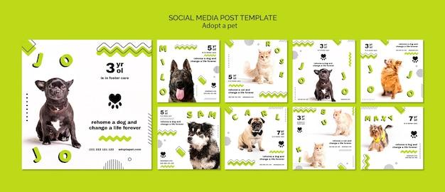 Post de mídia social de adoção de animais Psd grátis