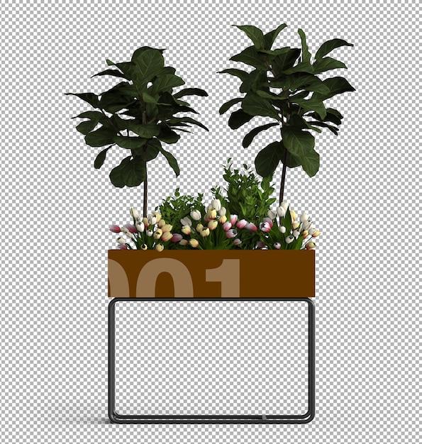 Renda da planta isolada. vista frontal isométrica. 3d. Psd Premium