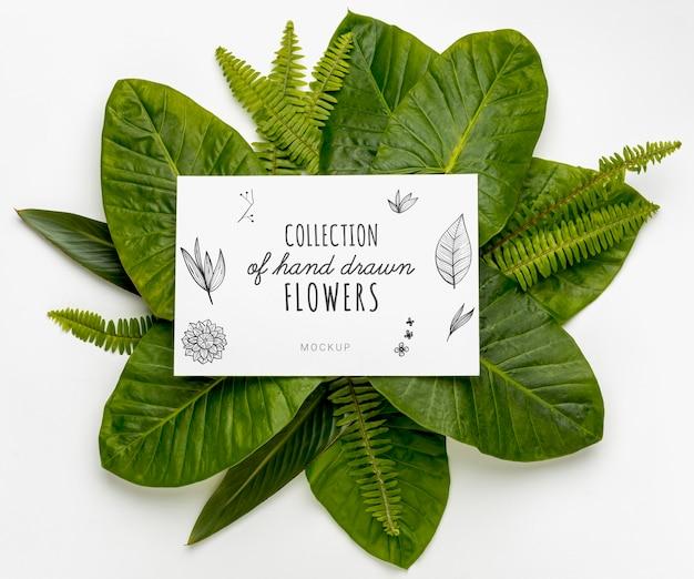 Vista superior coleção de flores de mão desenhada com maquete Psd grátis