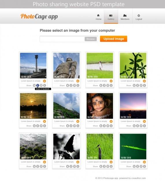 site Web de modèle téléchargement gratuit psd vecteurs