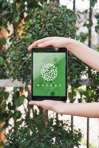 Hände, die Tablettenmodell mit Gartenarbeitkonzept halten Kostenlose PSD