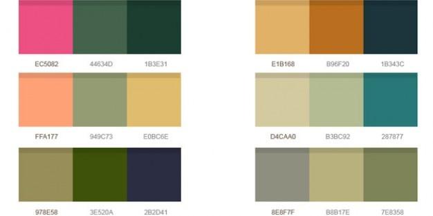 Wunderbare Farbpaletten psd | Download der kostenlosen PSD