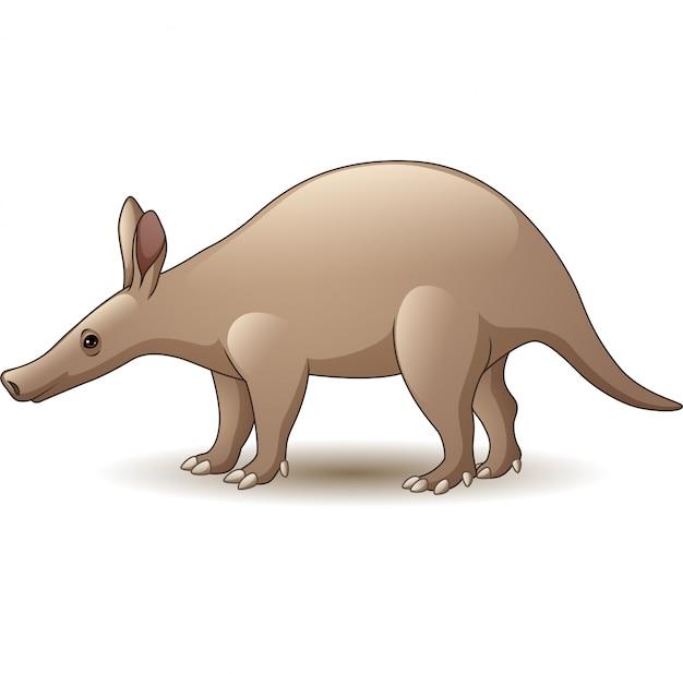 Aardvark de dessin animé isolé sur fond blanc Vecteur Premium