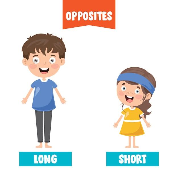 Adjectifs Opposés Avec Des Dessins Animés Vecteur Premium
