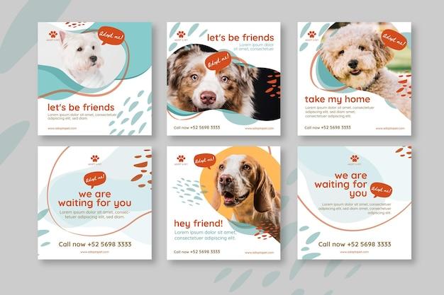 Adoptez Un Animal De Compagnie Instagram Posts Vecteur gratuit
