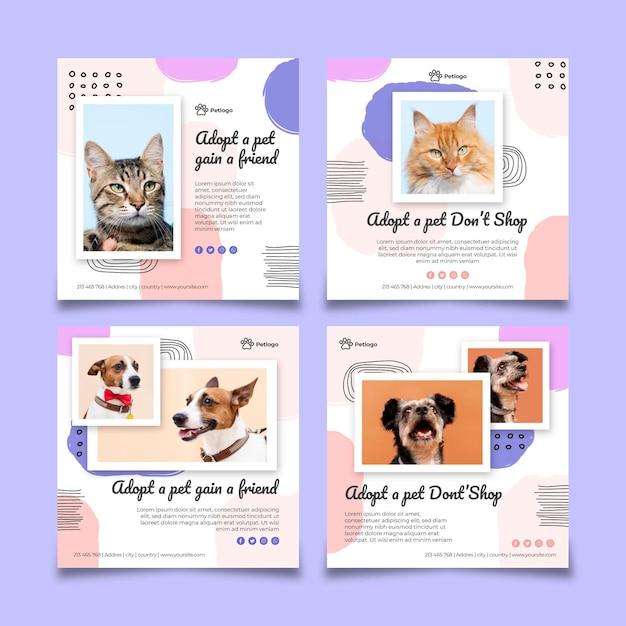 Adoptez Un Animal De Compagnie Instagram Posts Vecteur Premium