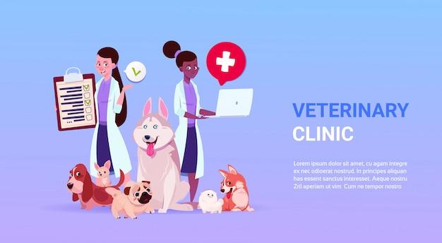 Affiche de la clinique vétérinaire avec des médecins femmes et un groupe de chiens sur le modèle Vecteur Premium