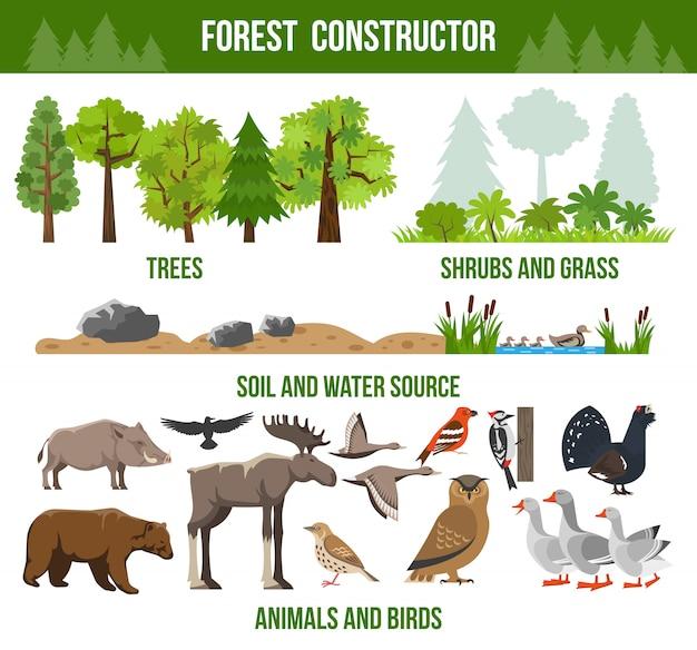 Affiche du constructeur forestier Vecteur gratuit