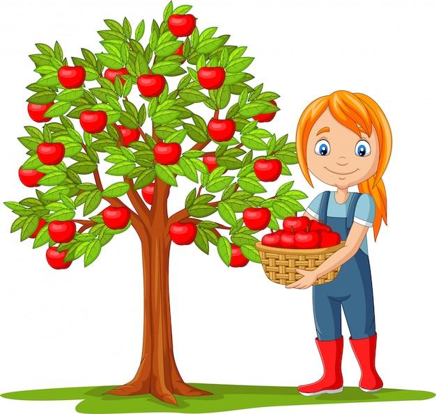 Agriculteur fille isolée, cueillette de pommes dans le panier Vecteur Premium