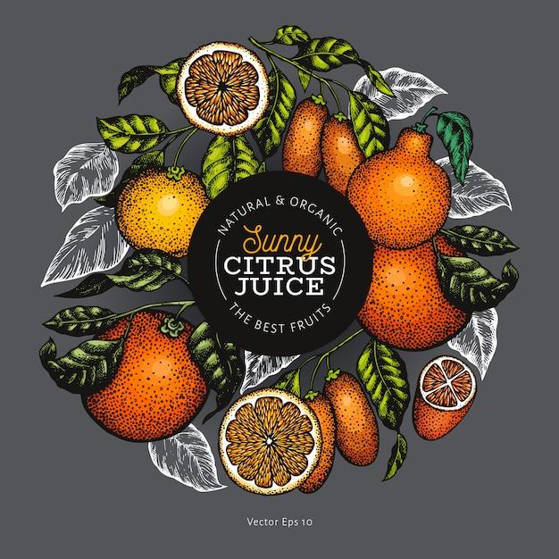 Agrumes En Cercle Vecteur Premium