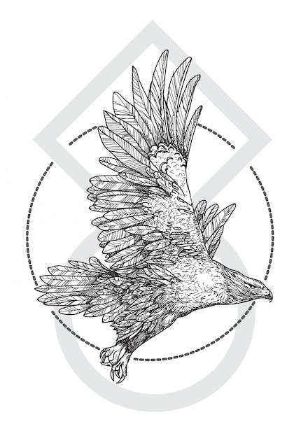 Aigle Vecteur Premium