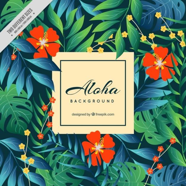aloha fond avec des fleurs rouges