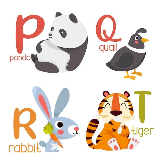 Alphabet animal graphique p à t. alphabet mignon de zoo avec des animaux dans un style bande dessinée. Vecteur Premium